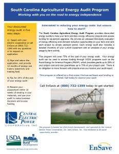 central_electric_-_ag_audit_-_program_flyer[1]